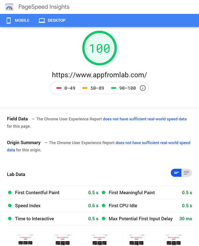 Screenshot of Google PageSpeed Results